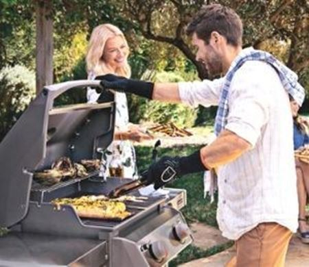 Picture for category WEBER GRILLS
